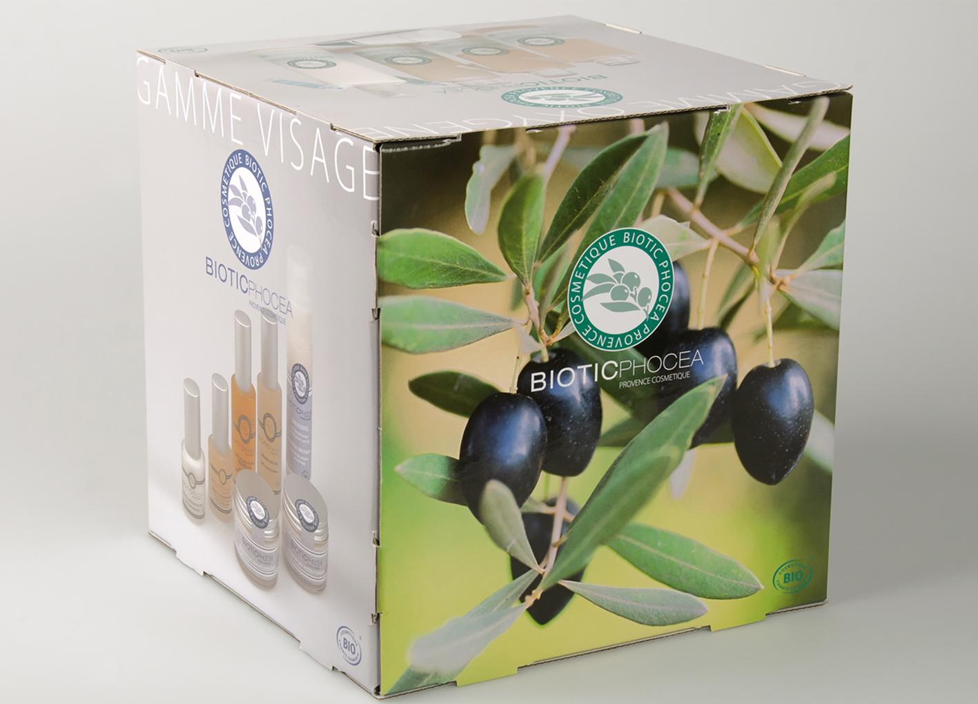 Cube biotic 2020 - Biotic Phocea